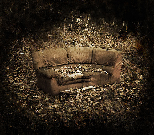old-couch in woods